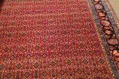AB-3, Bidjar, wool, 336 x 223 cm, Iran, 4350 €